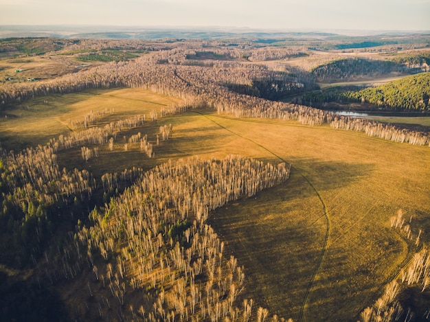 Aerial top view of country road through fields and forests in summer. clip. top view of the forest area with road.