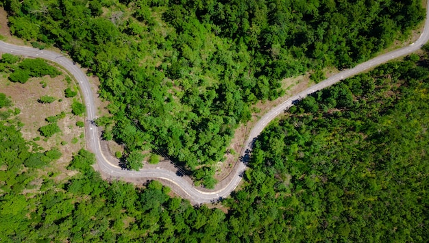Aerial top view of curves roadway pass through fresh green forest on mountain, road path on hill