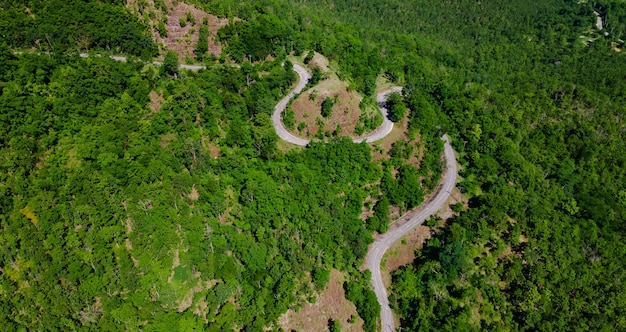 Aerial top view of curves roadway pass through fresh green forest on mountain, road path uphill in urban