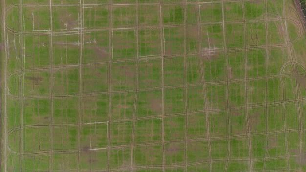 Аэрофотоснимок вид сверху поля зеленого риса фоновый узор