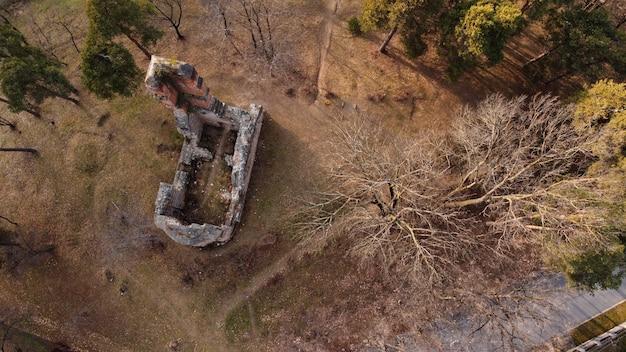鬱蒼とした森の廃墟の廃墟の空中上面図