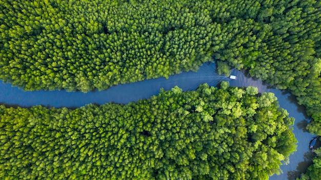 タイのマングローブ森林保護区の川のボートの空中のトップビュー
