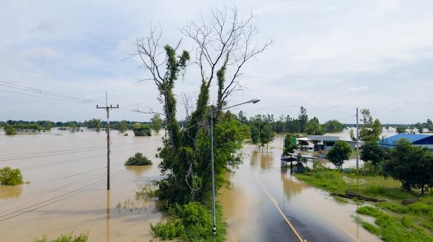 홍수 쌀 논과 마을의 공중 평면도