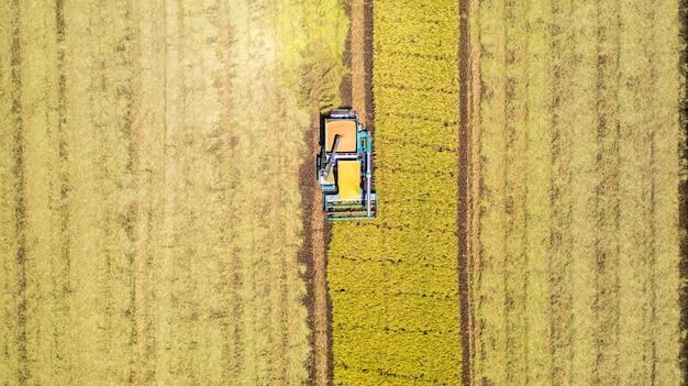 위에서 논에서 일하는 수확기 기계의 공중 평면도
