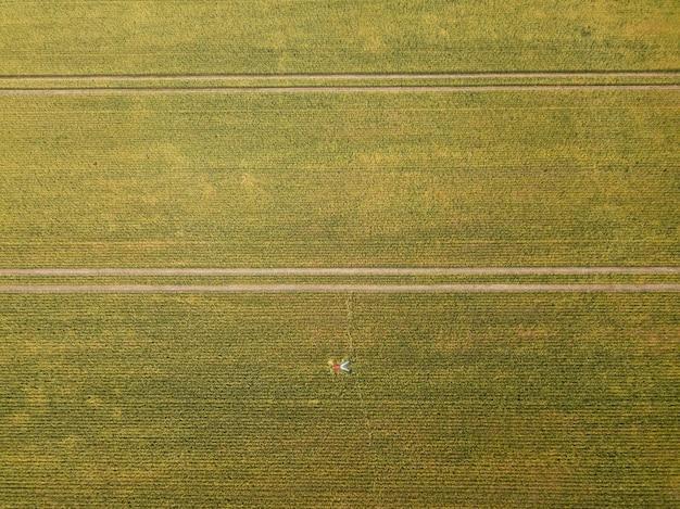 空撮。若い農夫は大きな麦畑の中にあります。農業のコンセプト