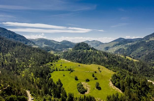夏の日のセルビアのタラ山の森の空撮