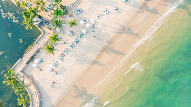 Aerial view of beach and sea Free Photo
