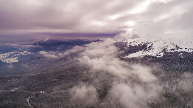 丘の上に生えている鬱蒼としたモミの森を背景に美しい雲が浮かぶ空撮