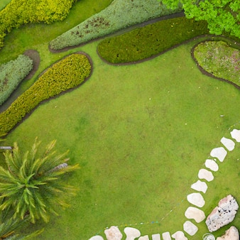 Aerial view of beautiful green garden