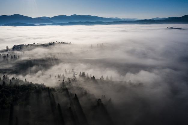 Aerial view of colorful mixed forest shrouded in morning fog on a beautiful autumn day
