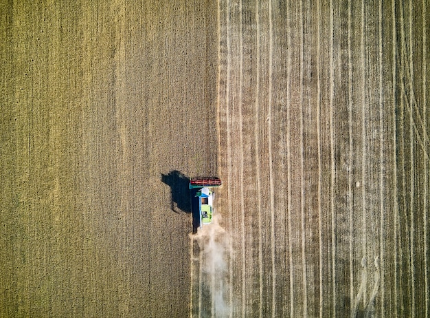 Aerial view on combine harvester gathers the wheat at sunset. harvesting grain field, crop season. view on harvester in the partly harvested field.
