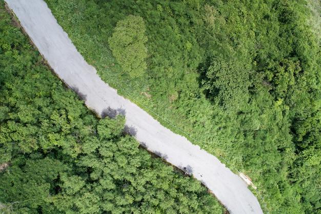 공중 보기 숲 녹색 여름 나무의 곡선 도로 드론 카메라 하향식 보기 놀라운 풍경 높은 각도 보기입니다.