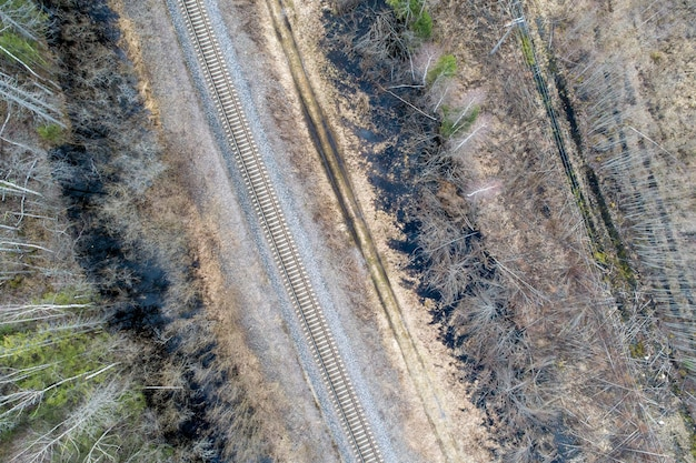 Aerial view  of a dense forest with bare autumn trees and an empty railroad track