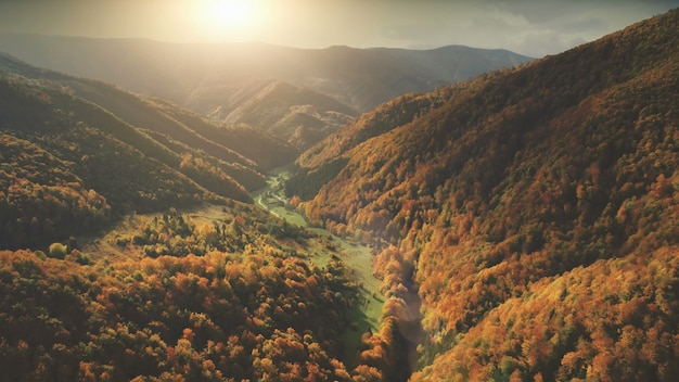 Aerial view over dramatic autumn canyon mountain landscape green meadows orange hills pine tree