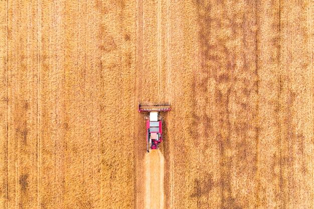 Дрон с высоты птичьего полета уборочного поля с трактором косит сухую траву. осеннее желтое поле со стогом сена после вида сверху урожая. сбор урожая в полях. запаситесь сеном на зиму. вид сверху.