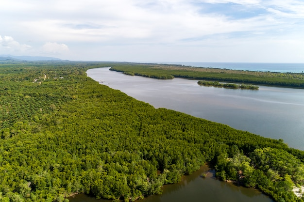 Aerial view drone shot of beautiful natural scenery river in mangrove forest and mountains in phang nga province thailand