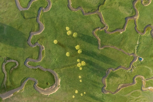 Aerial view of extraordinary meadow with many paths