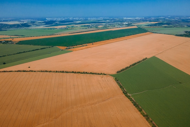 Aerial view of the field with different crops drone flight over wheat and corn crops geometric shapes