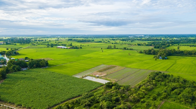 Aerial view of fields with various types of agriculture in rural thailand samchuk, suphanburi , thai
