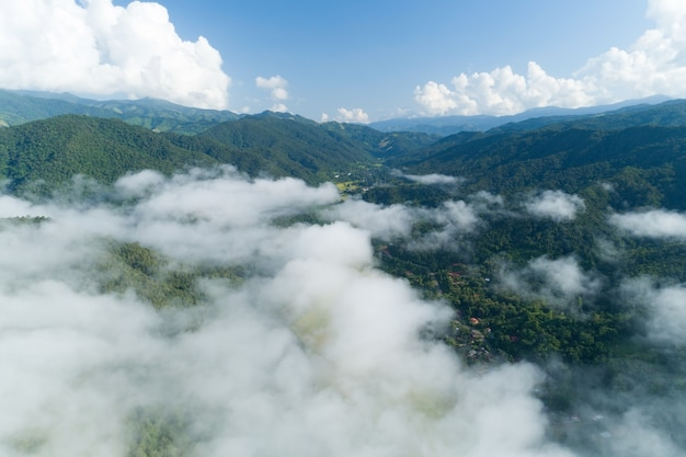 Aerial view of flowing fog waves on mountain tropical rainforest