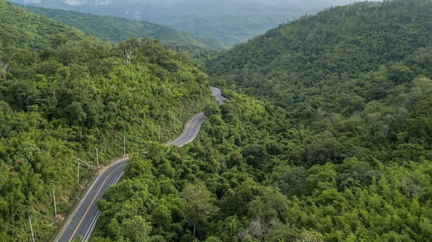 Aerial view of forest road, aerial view of a provincial road