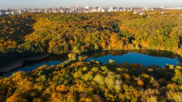 Aerial view of forest with yellow trees and beautiful lake landscape from above, kiev, goloseevo forest, ukraine