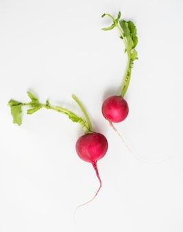Aerial view of fresh radish on white background