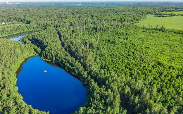 森の中の湖のドローンからの空撮