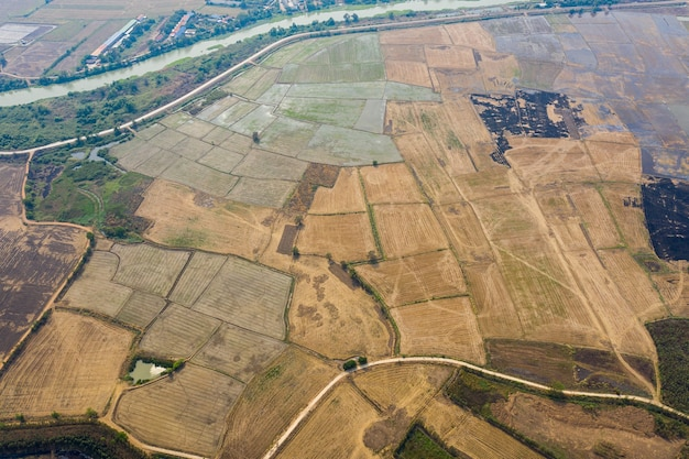 Aerial view from flying drone of field rice with landscape green pattern nature background, top view field rice