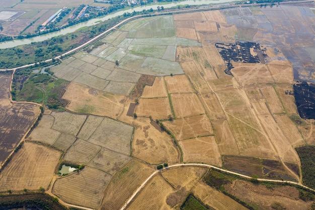風景緑のパターンの自然の背景、上面のフィールドライスとフィールドライスの飛行ドローンからの空撮