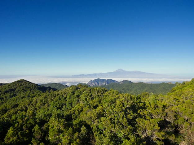 Aerial view of garajonay national park in la gomera island, tenerife island in the backgro