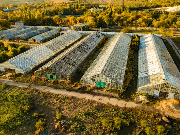 Aerial view of glass agricultural greenhouses exterior on summer day