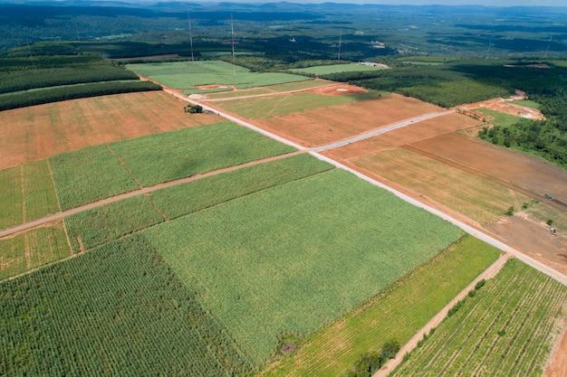 Aerial view green farm