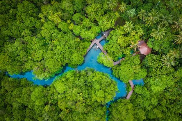 Tha pom klong song namマングローブ林またはエメラルドプールの空撮画像が見えないプール