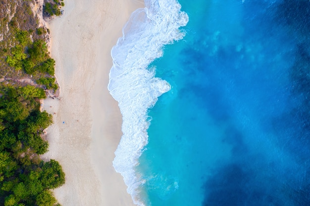 Aerial view of kelingking beach in nusa penida island, bali in indonesia