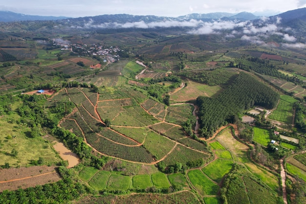 朝の時間の間に霧霧でアジアの田舎の村の山に汚された農地の空中写真の風景。