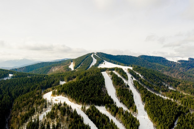Aerial view of landscape of ski and snowboard slopes through pine trees