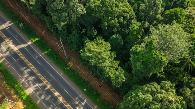 Aerial view landscape of tree or forest and road , krabi thailand - image