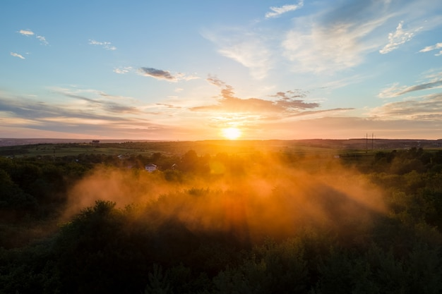 Aerial view of light fog covering dark forest trees at warm sunset.