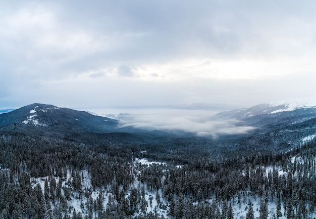 Aerial view of the mystical landscape of a winter mountain forest on a cloudy frosty day.