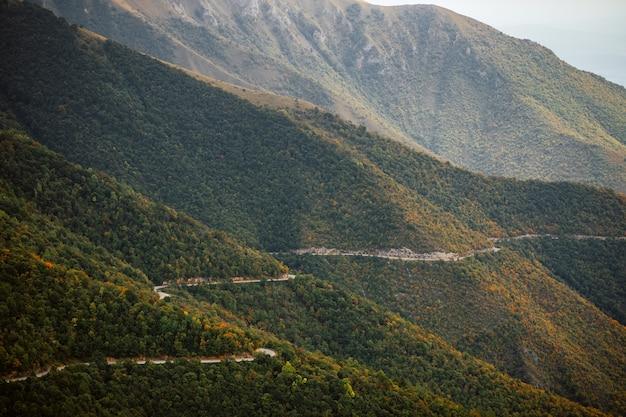 나무와 산을 통과하는 시골 도로의 공중보기