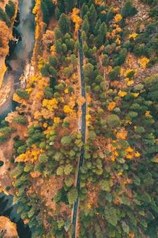 秋の色とりどりの野生の自然を通る高速道路の空撮