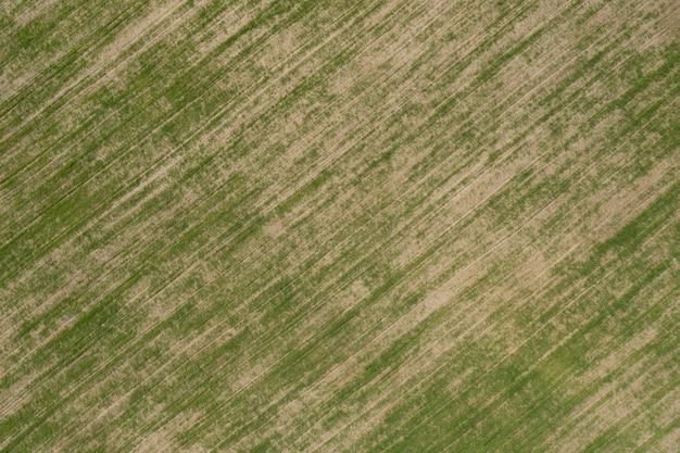 緑の作物が植えられている農地の航空写真。