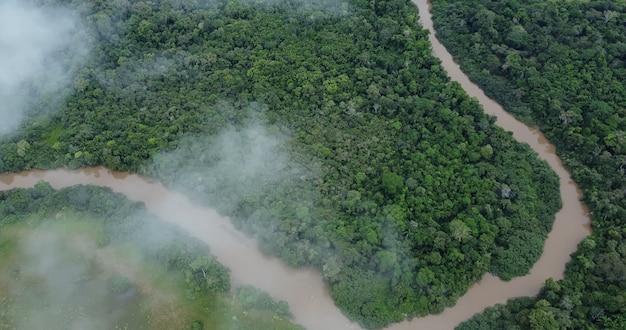 Вид с воздуха на тропические леса амазонки в бразилии, южной америке. зеленый лес. с высоты птичьего полета.