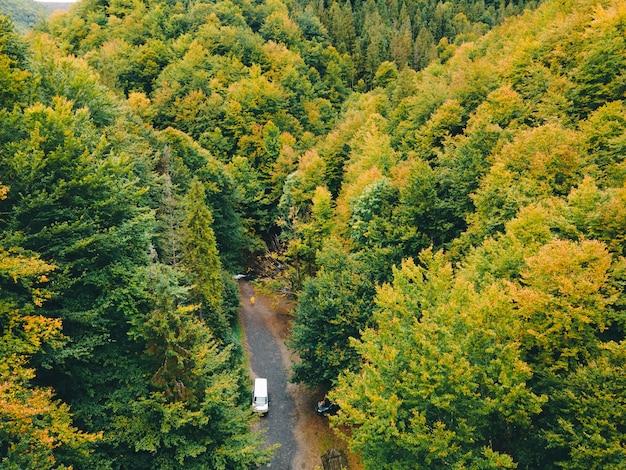 秋のカルパティア山脈の空撮コピースペース