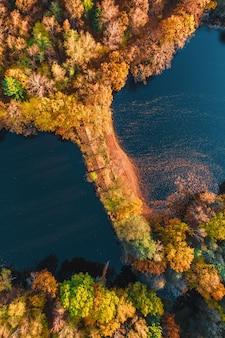Вид с воздуха на осенний лес с озером с беспилотных деревьев с оранжево-красными желтыми листьями