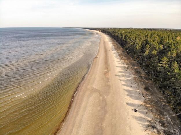 Аэрофотоснимок берега балтийского моря и леса