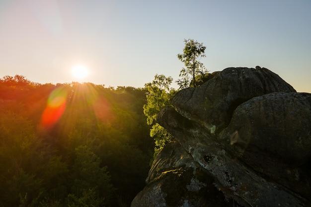 따뜻한 여름 일출에 어두운 숲 나무와 큰 바위 바위 위에 밝은 안개 아침의 공중 전망. 새벽에 야생 삼림 지대의 아름다운 풍경.