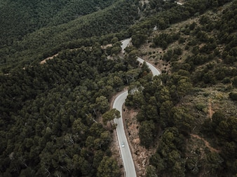 Aerial view of car driving on road through forest