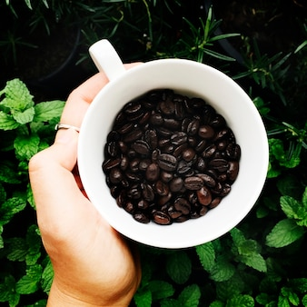 Aerial view of coffee beans cup